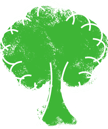 bois - Recyclage Express