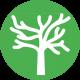 debarras_de_branches_mortes_arbres_recyclage_express